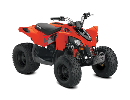 Can-Am DS